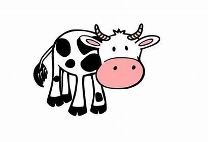 Cow Animals Invisible Flashcards Farm Vache Jeu