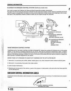 Wiring Diagram  30 Honda Shadow Carburetor Hose Diagram