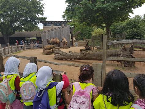 ks trip  zsl london zoo spring term  quwwat ul