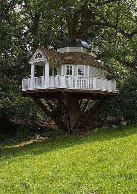 Nice Tree Houses  These Homes Are Interesting  Pinterest