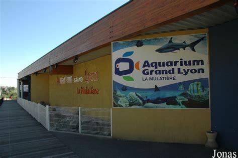 aquarium de la mulatiere 28 images les zoos dans le monde aquarium de lyon les zoos dans le