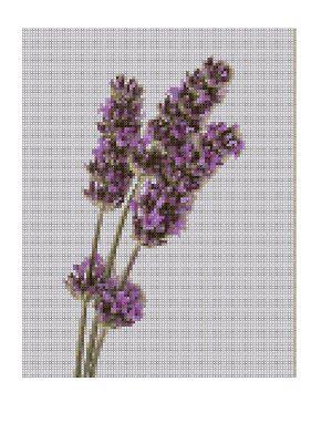 lavender crafts     lavender