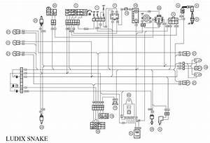 Identification  Faiseau Electrique Ludix - Scooter Et Mobylette