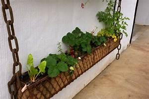 erdbeeren im blumenkasten tipps tricks fur reiche ernte With französischer balkon mit pflanzen für vertikale gärten