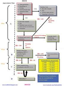 Neonatal Resuscitation Algorithm 2012