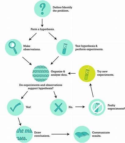 Investigation Scientific Steps Science Diagram Investigate Could