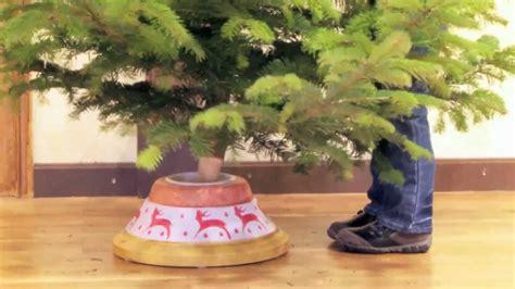 best 28 weihnachtsbaum selber schlagen schwarzwald