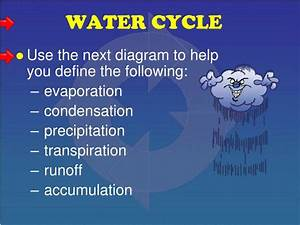 Ppt - Biogeochemical Cycles Powerpoint Presentation