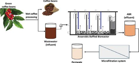 Treatment of low strength industrial of coffee processing wastewater into inland cluster wastewater by anaerobic hybrid reactor. Wastewater Treatment of Wet Coffee Processing in an Anaerobic Baffled Bioreactor Coupled to ...