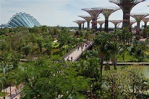Spectacular Gardens By The Bay In Singapore | iDesignArch ...
