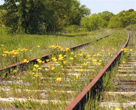 rails trails setback