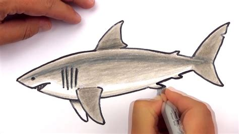 ocean archives art  kids hub