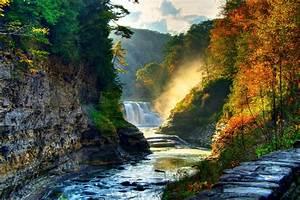 Landscape, Nature, Tree, Forest, Woods, Autumn, River