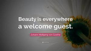 Beauty, Is, Everywhere, Quotes