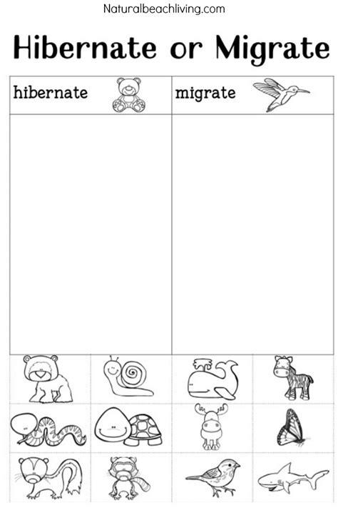 winter animals worksheets for kindergarten winter animals for preschool activities natural beach living