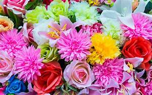 25 gorgeous flowers pictures the wow style