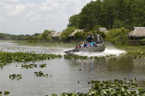 Everglades Airboat Tours Seminole by Pin By The Westin Resort Spa Fort Lauderdale On