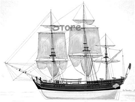 Hms Bounty Sinking Location by Hms Bounty Dimensions Images