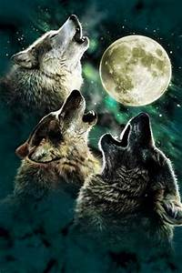 Pack of Wolves howling at the full moon | Stitch | Pinterest