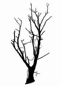 Dead Tree Silhouette Clip Art (37+)