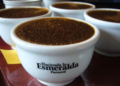 Hacienda la esmeralda is a specialty coffee producing company owned by the peterson family and located in the highlands of boquete every step of coffee processing is important, from growing coffee all the way to shipping it. La Esmeralda (Porton Pascua) Washed Geisha, Panama - Sea Island Coffee