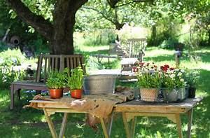 Garten Pflanzen : pflanzen f r den garten ~ Eleganceandgraceweddings.com Haus und Dekorationen