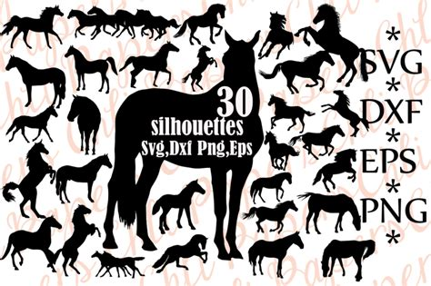 Create your diy shirts, decals, and much more using your cricut explore, silhouette and other cutting machines. Horse Silhouette Svg, HORSE CLIPART, Horse Svg Bundle ...