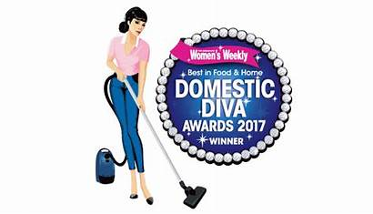 Cleaning Clean Tools Kitchen Awards Domestic Award