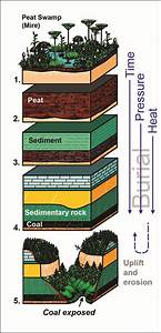 Coal Diagrams For Download  Kentucky Geological Survey