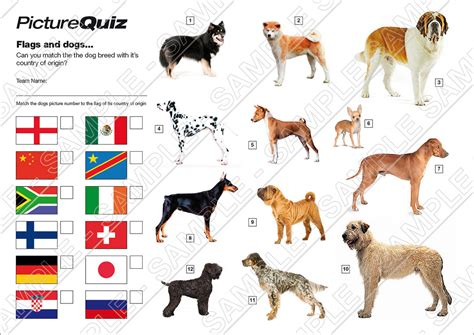 quiz number   flags  dogs picture