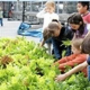 Local Public Schools Get Money for Gardens - Manhattan ...
