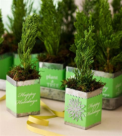 nature favors - Christmas Table Gifts For Guest