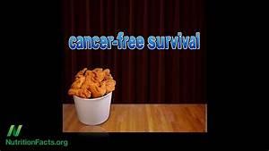 Saturated Fat  U0026 Cancer Progression