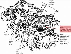 I Have A 97 Chevy Lumina Code Says P0440  Where Do I Start