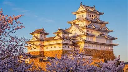 Castle Himeji Japan Japanese Wallpapers Cherry Blossom