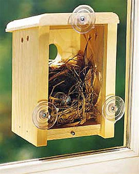 window nest box birdhouse taking it out doors pinterest