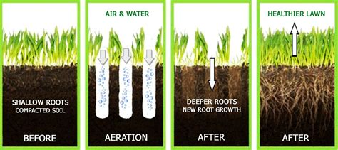 benefits of aerating lawn the best lawn aerators manual and machine