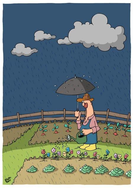 Garten Archive - Cartoonalarm