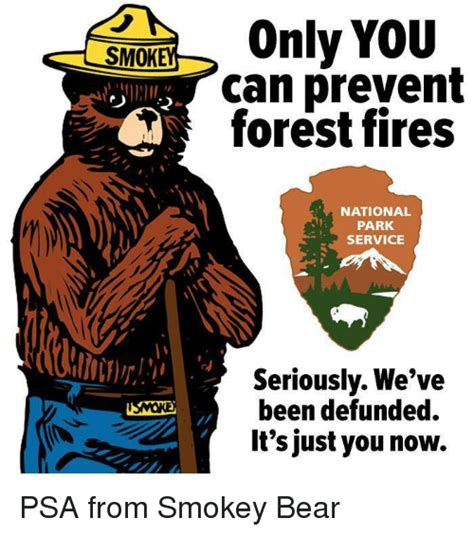 Only You Can Prevent Forest Fires Meme - 25 best memes about smokey bear smokey bear memes