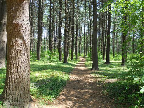 File:Maudslay running trail 1.JPG - Wikimedia Commons