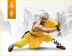 Gallery For > Snake Kung Fu Forms