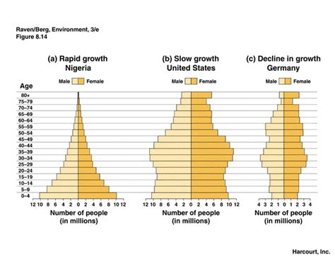 Age Structure Diagram by The Human Population Kelseyerisman