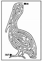 Coloring Printable Dozen Maze Fun Half Puzzles Fish Connect sketch template