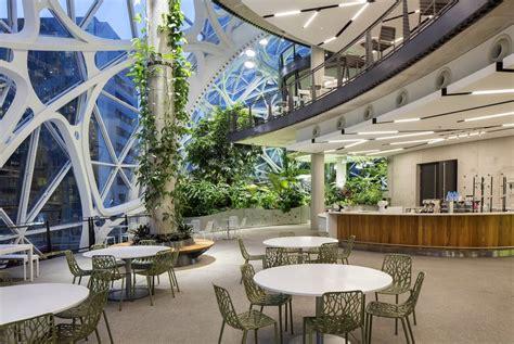 amazon rainforest spheres mini work space  open  seattle