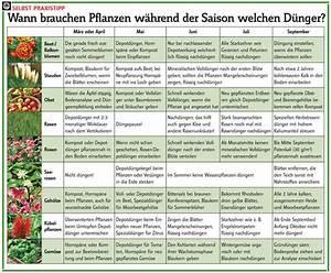 Was Kann Man In Ein Gewächshaus Pflanzen : wann d ngen ~ Lizthompson.info Haus und Dekorationen