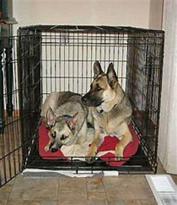 once upon a mattress bark confessions of a dog trainer With dog crate size for german shepherd