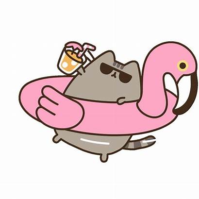 Pusheen Cat Swimming Stickers Sticker Giphy Kawaii