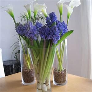 Tulpen Im Glas Ohne Erde : fr hlingsdeko tipps und ideen f r trendy fr hlingsdeko ~ Frokenaadalensverden.com Haus und Dekorationen