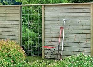 Immergrüne Kletterpflanze Für Zaun : sichtschutz f r balkon und terrasse mein sch ner garten ~ Michelbontemps.com Haus und Dekorationen