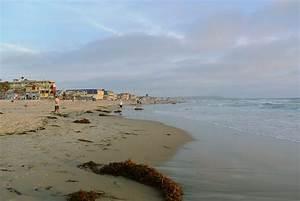 Pacific Beach, San Diego - Wikipedia